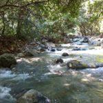 Observaciones al río La Silla